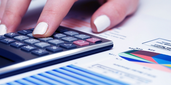 Accounting and Bookkeeping Services for the Small Business